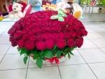 Цветы с доставкой в город Североморск (Мурманская область)